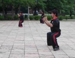 El kung fu comarcal en acción.
