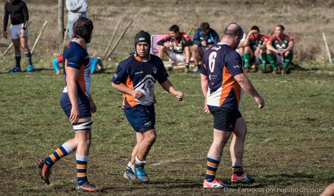 rugby jabalies