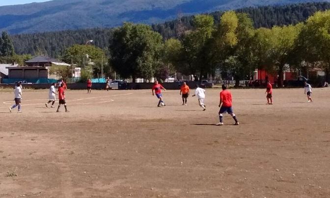 Maderera Andina manda en soledad en Afuveco