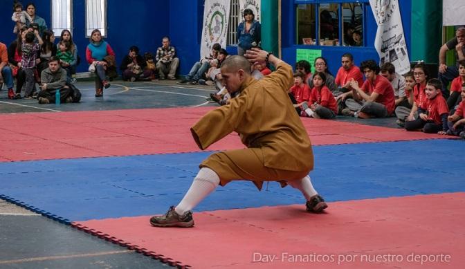 Gran exhibición de artes marciales en El Bolsón