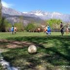 Afca vuelve con localías